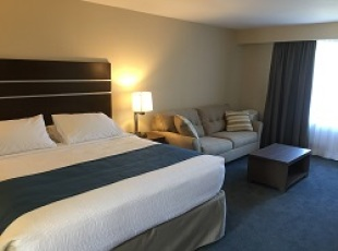 Newly renovated motel room
