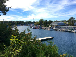 Falling for Tobermory